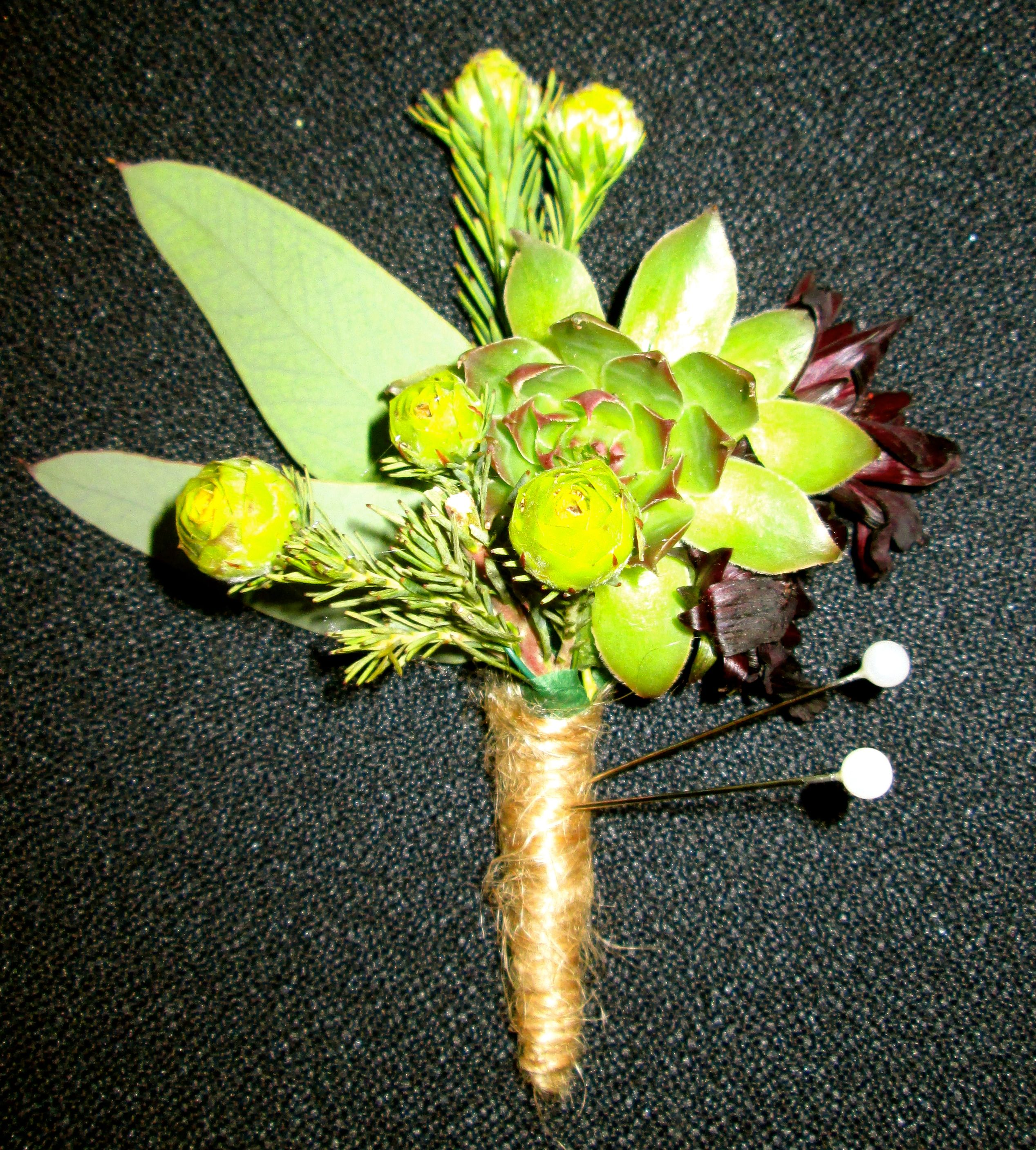succulent boutonniere with twine